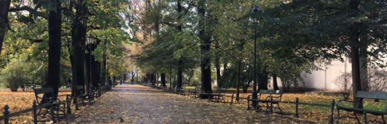 Czas na jesienny spacer