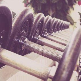 Salka fitness