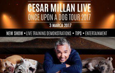Cesar Milan live w Atlas Arenie!