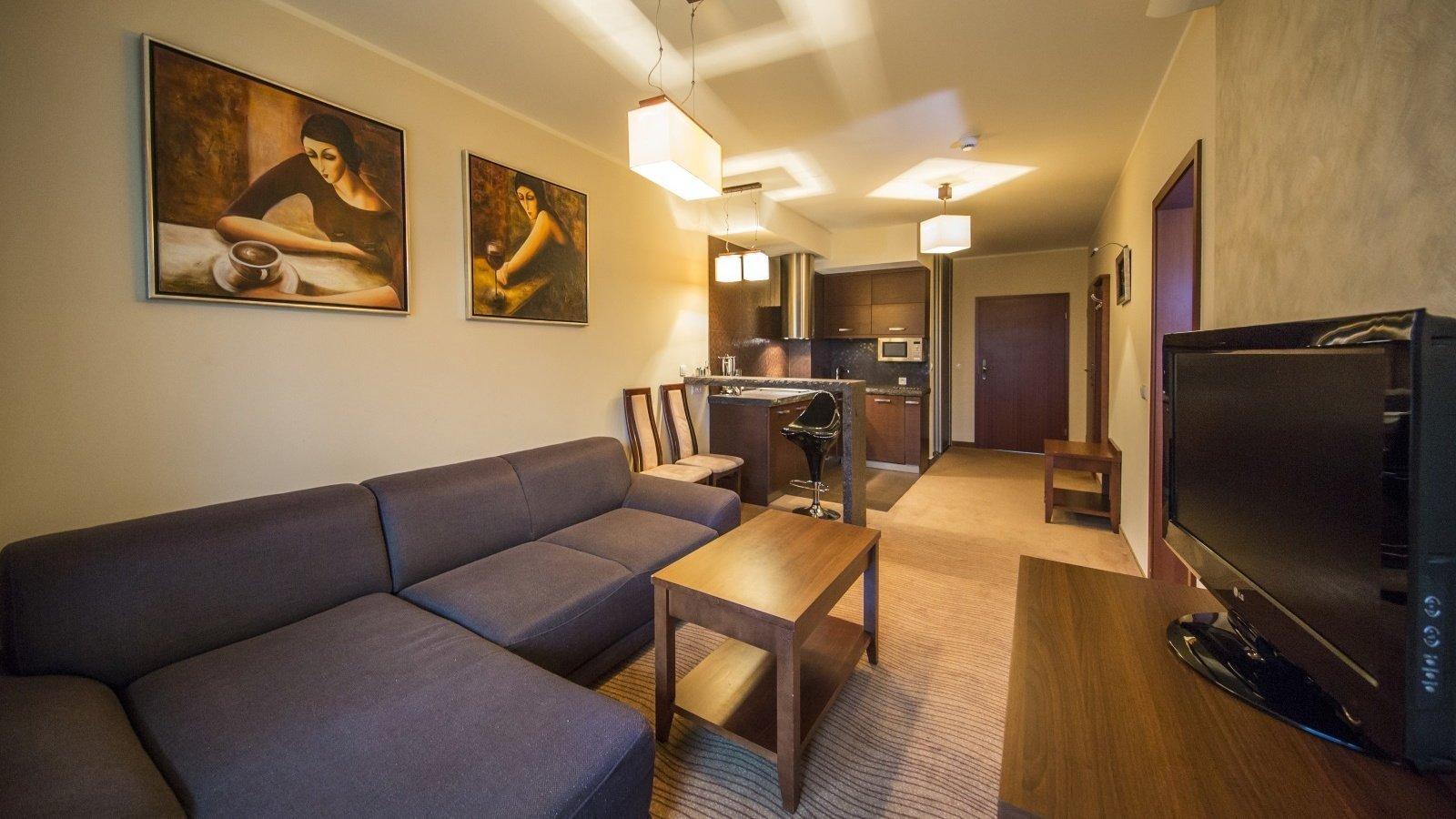 murowanica-apartament5.jpg