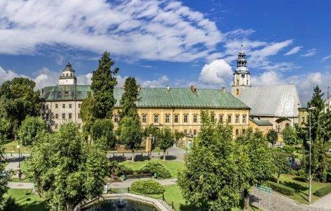 Zamek Międzylesie