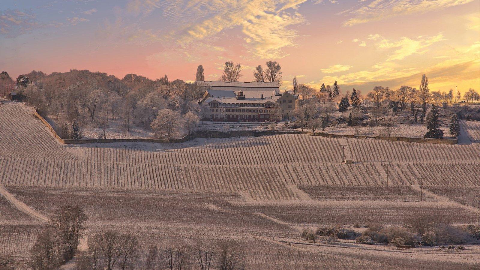 Bilder_R_Oppenheimer/WinterSchlossWesterhaus.jpg