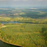 Drawieński National Park