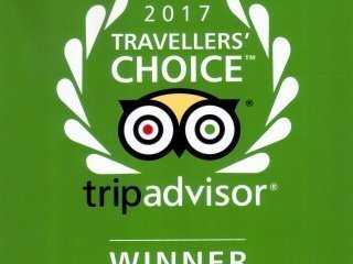 Travellers' Choice Award