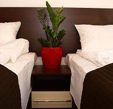magnolia/P7080206.jpg