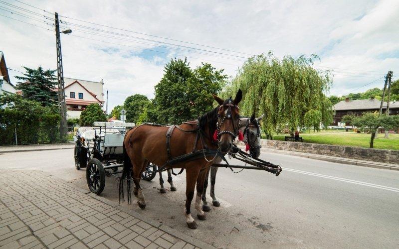 Grupy/hotel_spichlerzpodzurawiem_kazimierz_dolny030.jpg