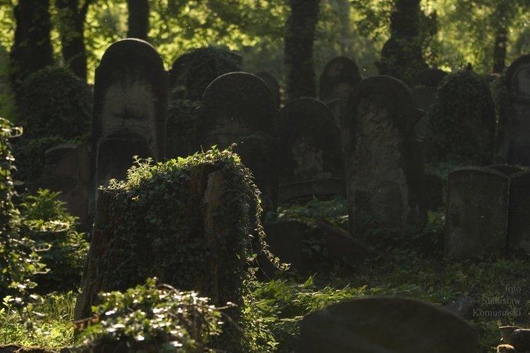 Lato/CmentarzydowskiCRW_5971_s.jpg