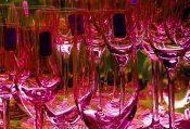 Degustacja win musujących