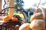 Piknik w OLANDII - wiejski stół - najlepsze konferencje w Wielkopolsce