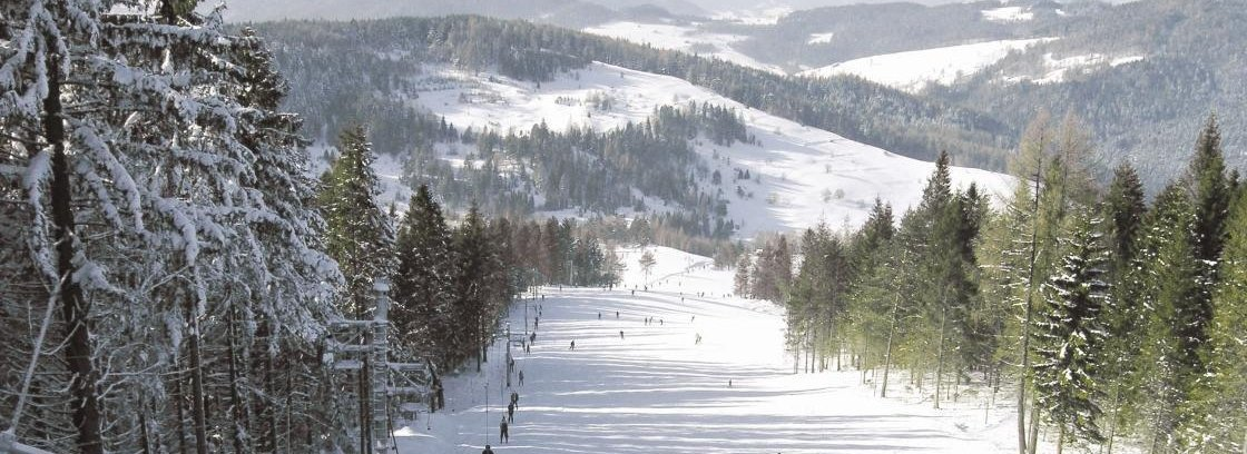 Stok narciarski Polanki - Wierchomla Muszyna