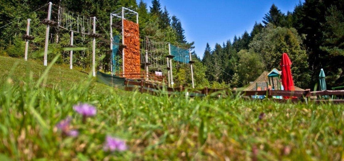park Linowy 1120x526