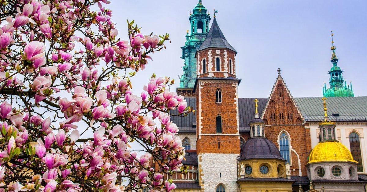 5 miejsc, które zachwycą Cię w Krakowie wiosną - Q Hotel