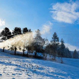 Śnieżymy Polanki