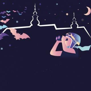 Twój nocny lotnik