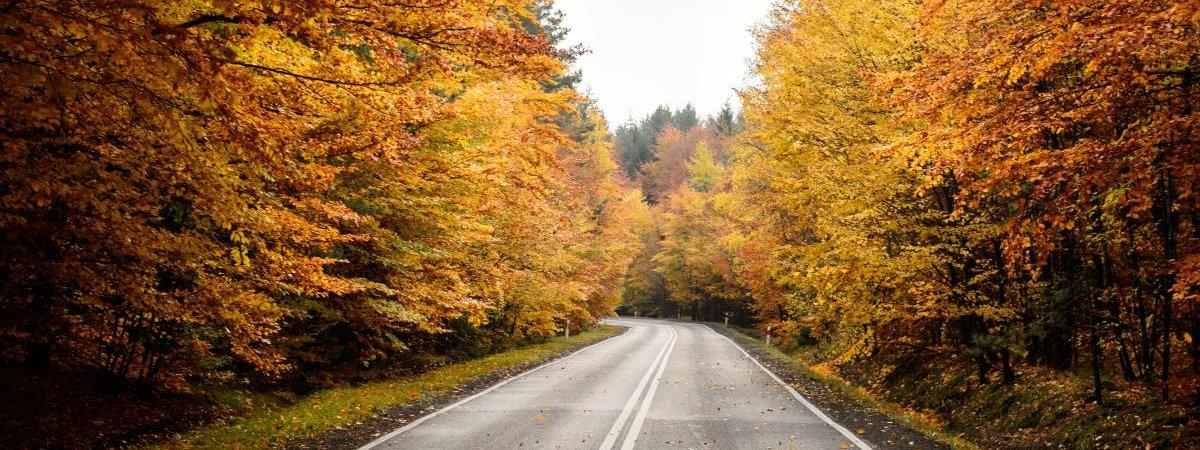 Gdzie pojechać na wakacje jesienią?