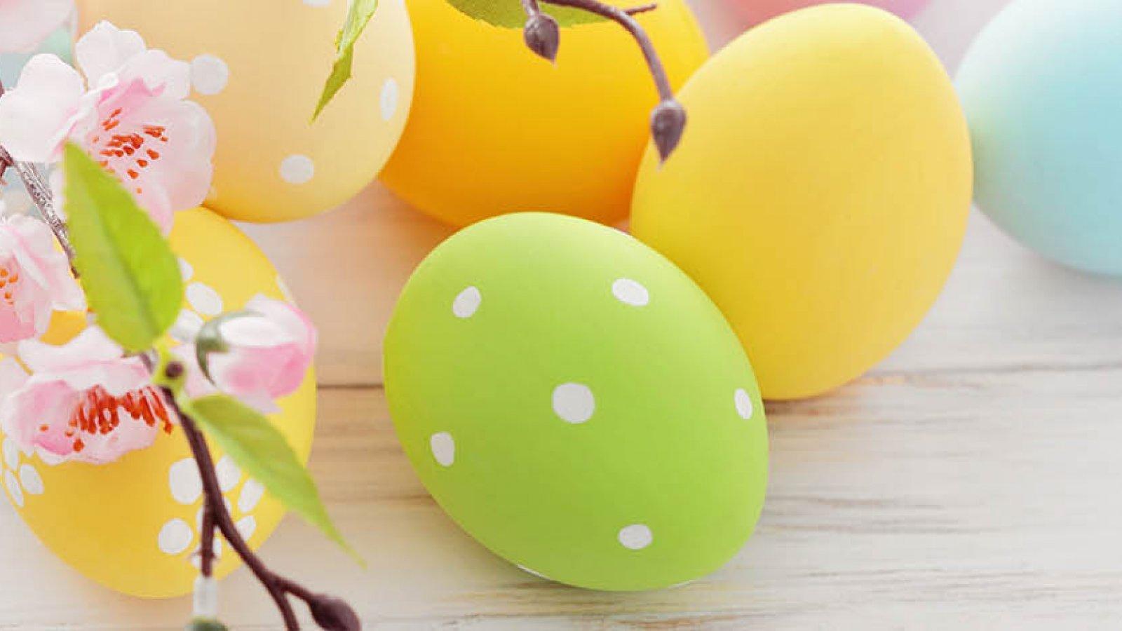 Family Easter in Ustron