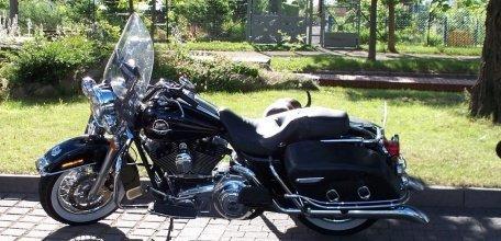 Mopeds auf dem Hof 1