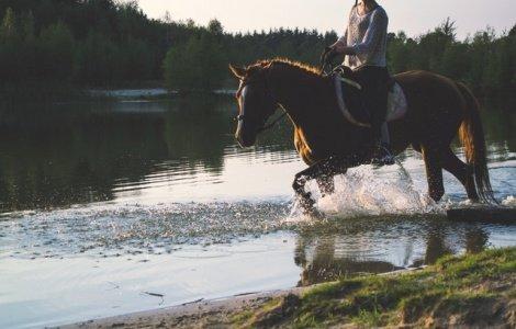 Ośrodek Jeździecki Dubelbar