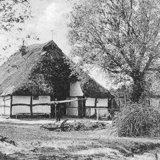 HISTORIA HOTELU  SENATOR  — Dźwirzyno