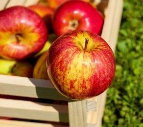 6 rzeczy, które warto jeść na wiosnę