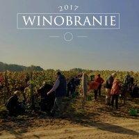 Winobranie 2017