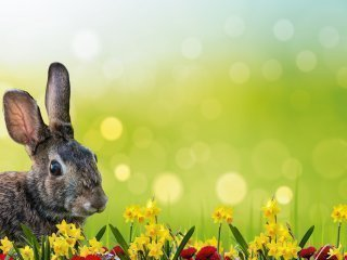 Easter Opening Hours: Restaurant & SPA