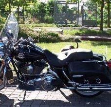 Motorrad/Motorrad-01.jpg