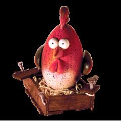Jajko kurczak