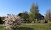 Frühlingsluft in Stangen - Der Spargel