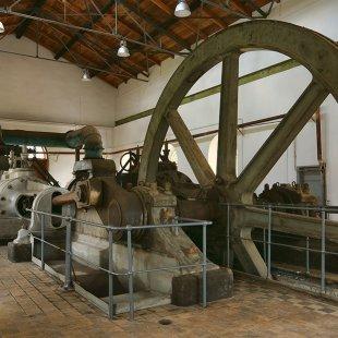 Muzeum Przyrody<br> i Techniki