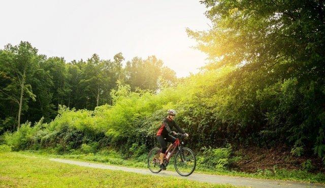 Trasy rowerowe, wypożyczalnia rowerów w Hotelu