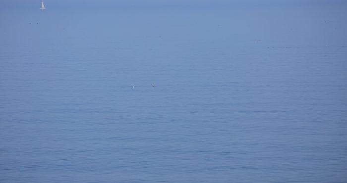 poczuj lato nad morzem z HAVET Hotel
