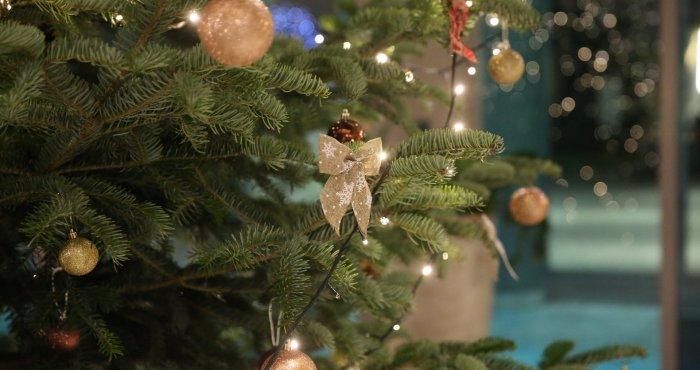 już czuć świąteczną atmosferę