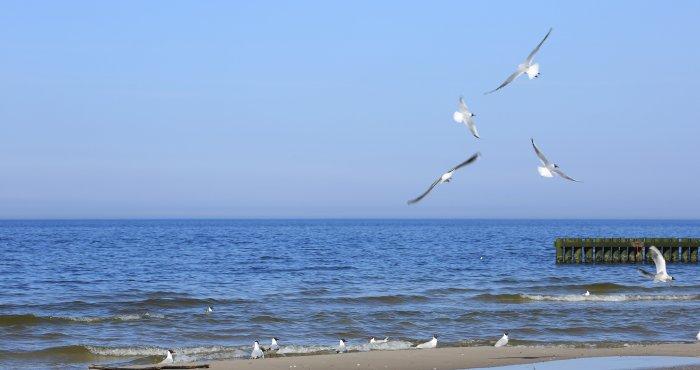 słonecznie nad morzem przez cały dzień