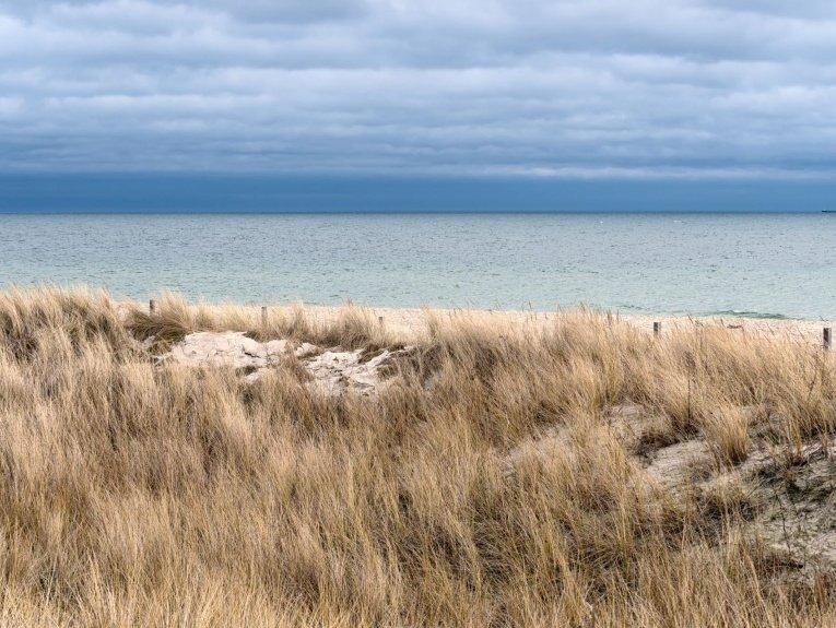 Zdjęcie morza