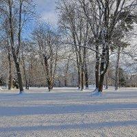 Zimička v Tartufe