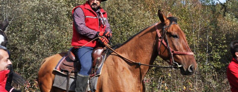 Przejażdżki i wyprawy konne
