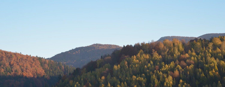 Szlaki górskie - Otryt w zasięgu ręki
