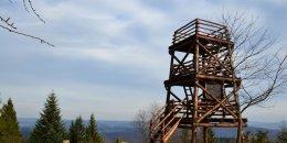 Jeleni Skok 777 m n.p.m. – szlak z Cisnej do wieży widokowej