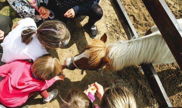 Wiosenne wakacje z dziećmi na Mazurach