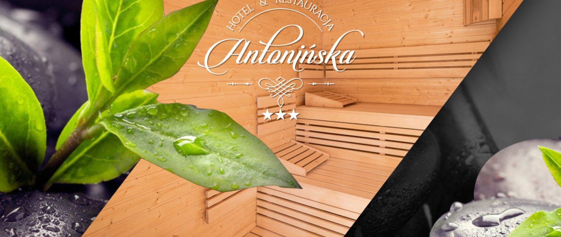 Na poprawę zdrowia i samopoczucia odwiedź Wellness & Spa w Antonińskiej