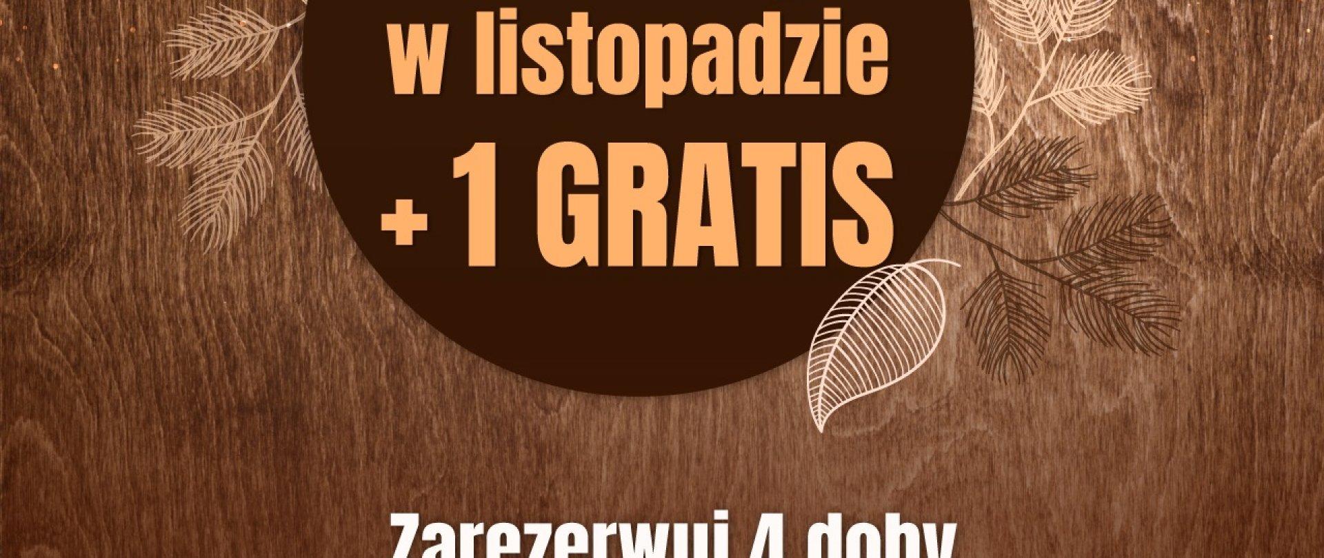 Rusza listopadowa promocja 4+1!