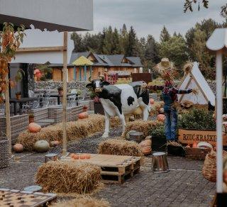 Już wkrótce otworzymy naszą Farmę Dyniową!