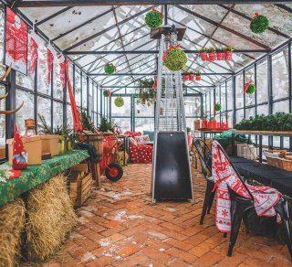 Pierwszy zimowy ogród świąteczny na Podkarpaciu