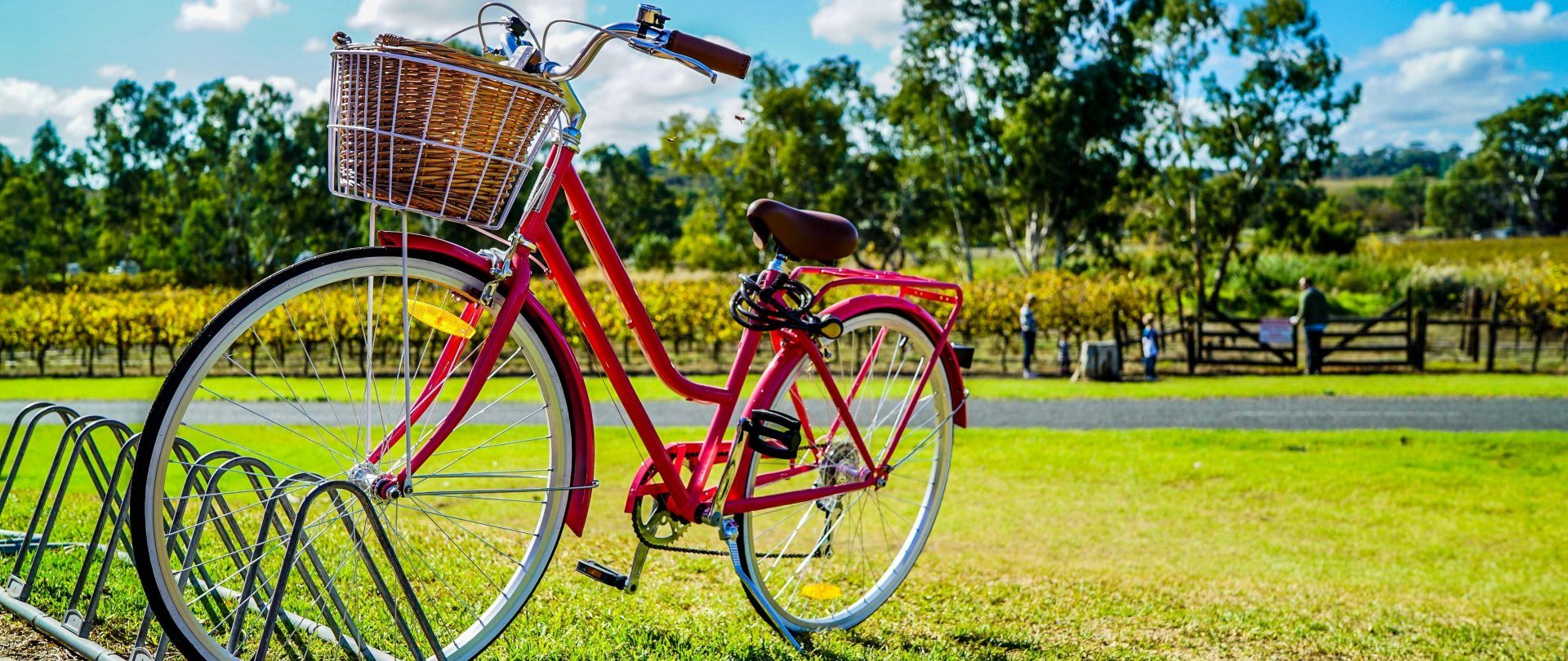 Bicycle trips