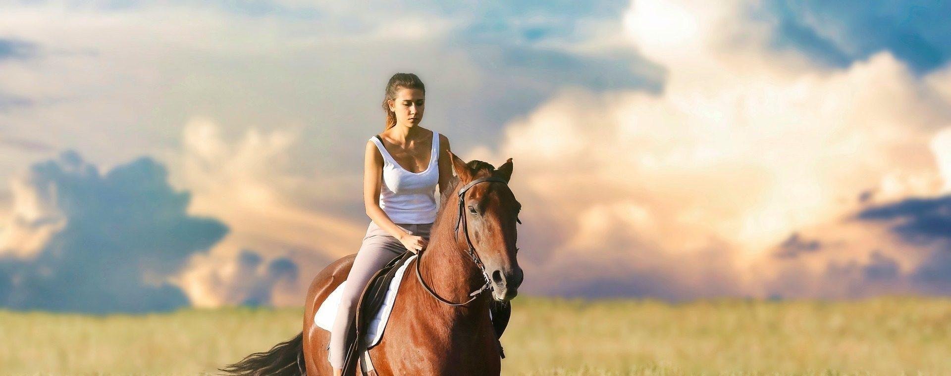 Stadnina koni Rajd, Jaworki