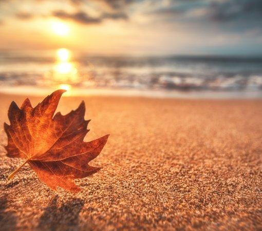 November langes Wochenende am Meer!