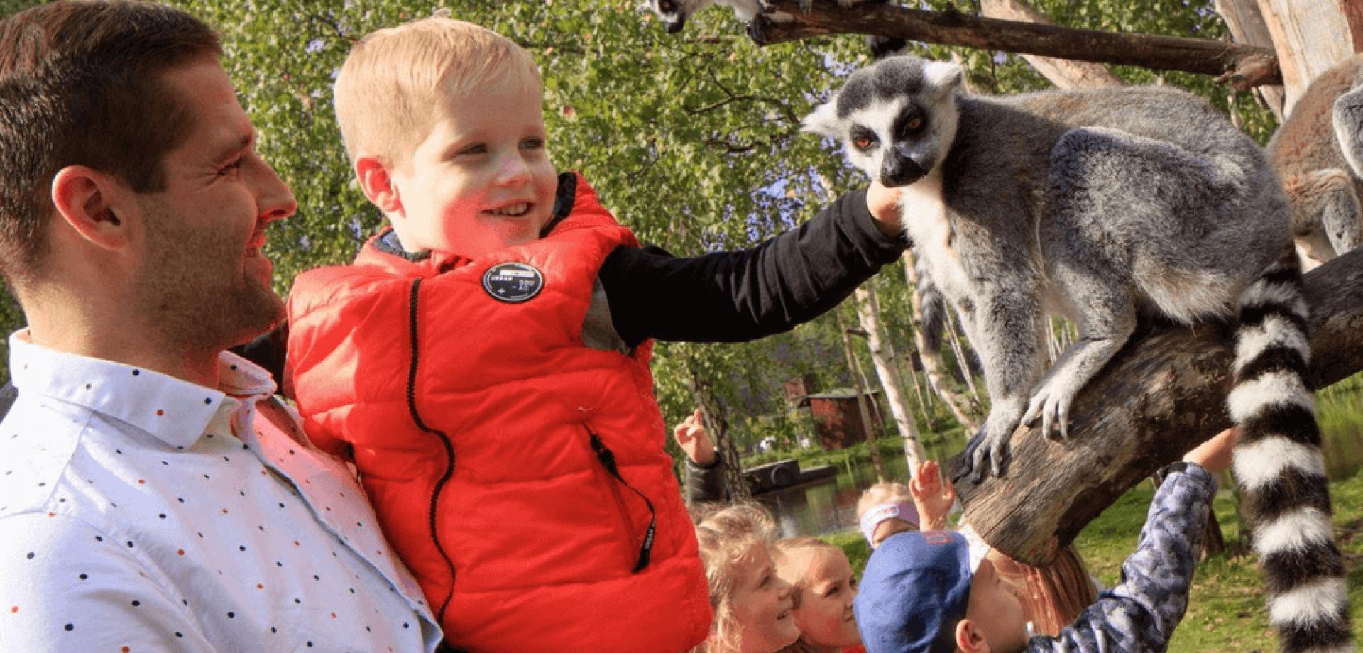 Gdzie na weekend z dzieckiem w Polsce? Sprawdź!