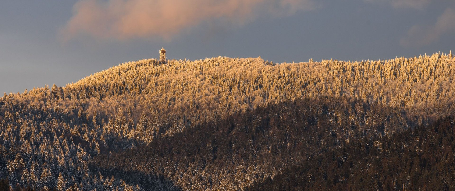 Stok narciarski KASINA