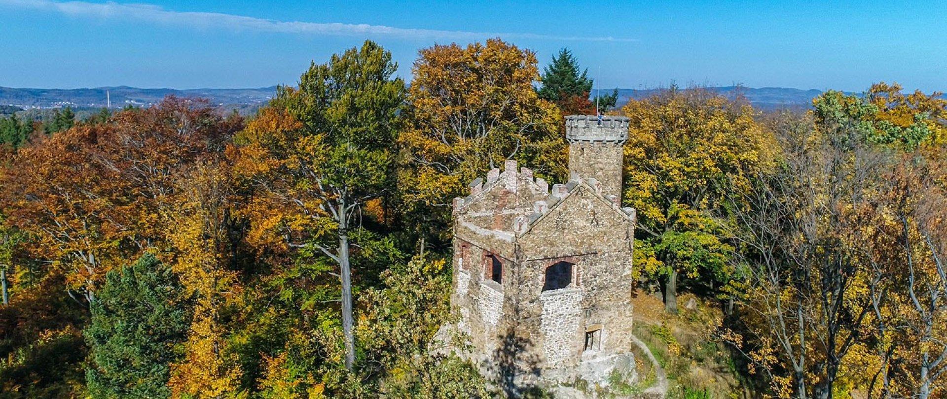 Ruinen von Heinrichsburg (Zamek Henryka)
